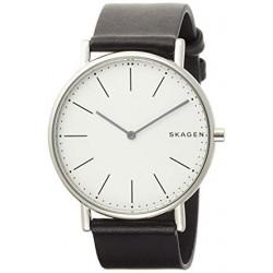 Reloj Skagen SKW6419